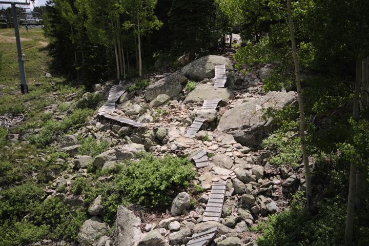 Psycho Rocks Trail at Evolution Bike Park at Crested Butte Mountain Resort.