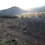 City staff paid $1,480 dollars to close two popular social freeride mountain bike trails on city lan...