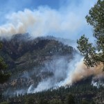 USDA Forest Service delays another response to a FOIA public records request