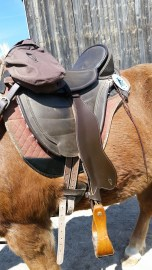 Treeless saddles can be adapted to any size or use.