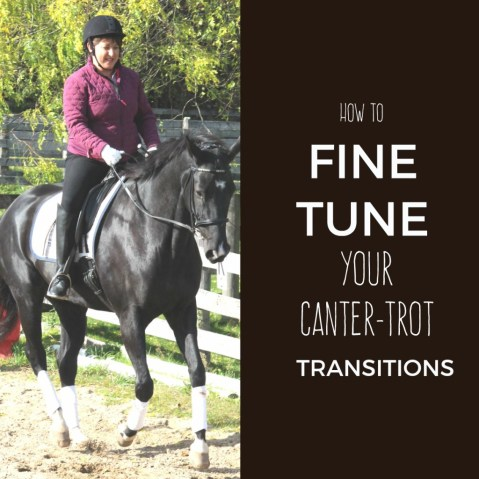 fine tune transitions