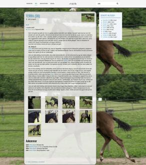 screenshot-hassleberga.horsemobil.se-2021.09.04-11_50_51 (3)