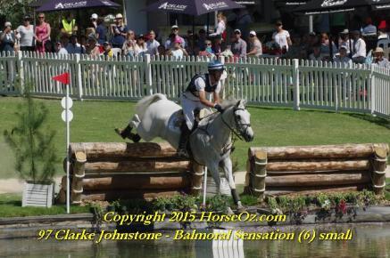 97 clarke johnstone balmoral sensation 6 small