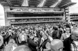 Newmarket Rowley Mile Grand stand