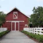 Does A Horse Need A Barn Shelter In A Pasture