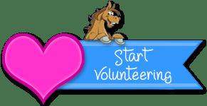 Volunteer at Dust Devil Ranch