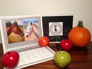 2018 Dust Devil Ranch Horse Calendar