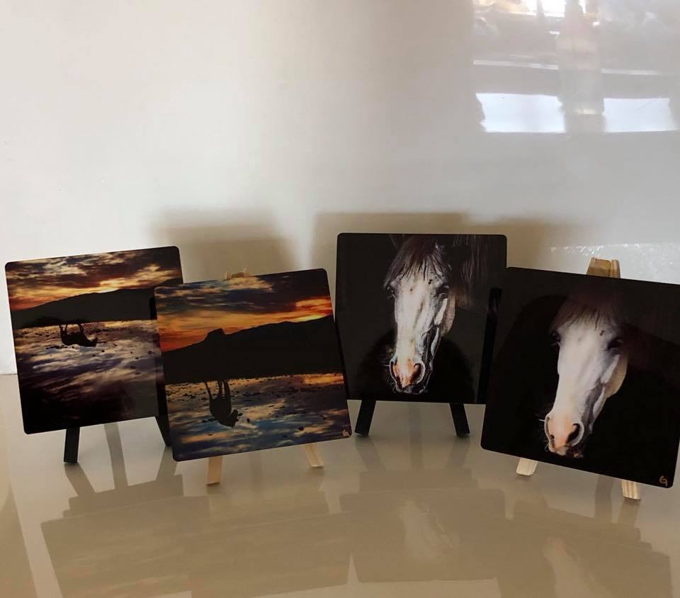4x4 Metal Horse Print with Stand and Wall Hanger