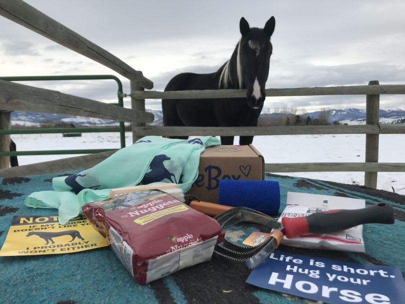 saddlebox contents