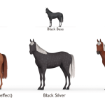 What Is A Silver Horse Explained With Pictures Horses And Us