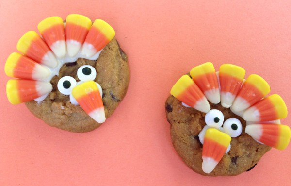 chocolate-chip-turkey