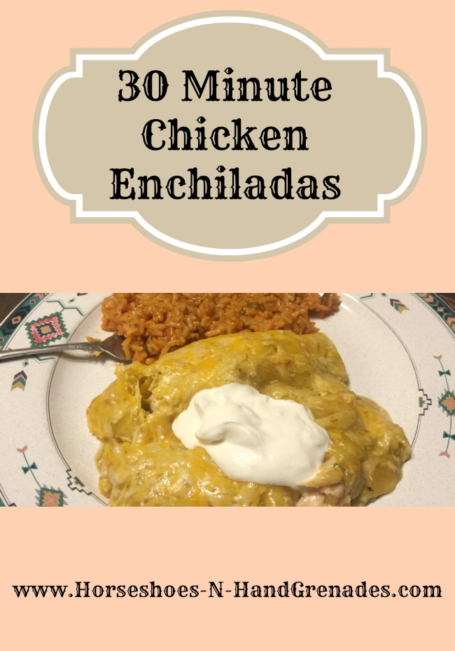 30-minute-chicken-enchiladas