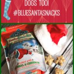 Don't Forget the Fur-Kids This Christmas #BlueSantaSnacks