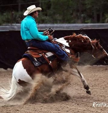 Rick and Trevor Steed Performing Dueling Reined Cow Horse Exhibition at COTA