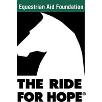 Sandro Hit Breeding Offered to Benefit Equestrian Aid Foundation