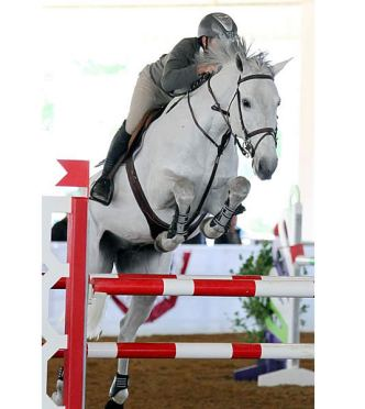 Michael Morrissey Rides to the Top of the 1.40m Leaderboard on Tampa Bay Classic's First Day