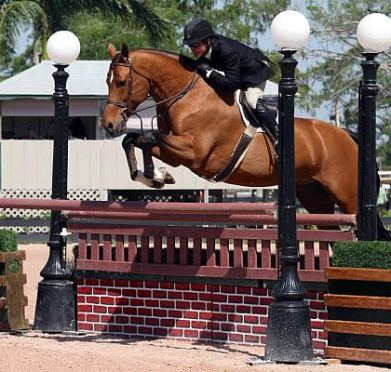 Nordic Lights Farm Claims Top Honors during WEF IX