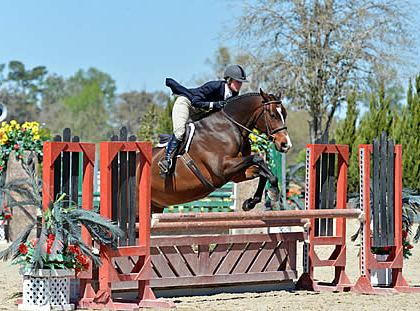 Amy Zettler Wins Final $1,500 HITS Hunter Prix of the HITS Ocala Winter Circuit