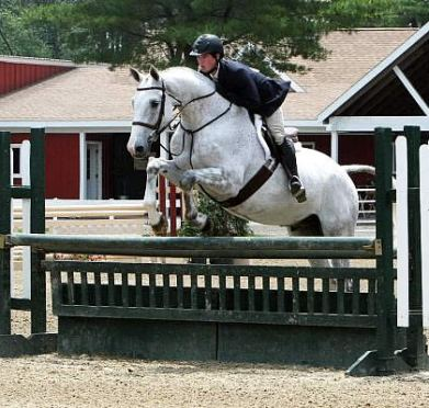 Nicholas Horgan Kicks Off First Day of Junior Hunter Competition at Plymouth Rock Hunter/Jumper Classic