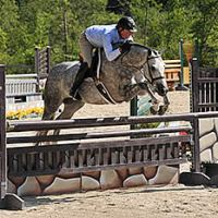 Scott Stewart claimed the Second Year Green Working Hunter Championship with Rose Hill Farm's Enjoy