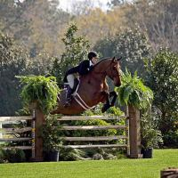 A USHJA National Hunter Derby is held every week and an International Hunter Derby is held during Week 5 of the Gulf Coast Winter Classic Series