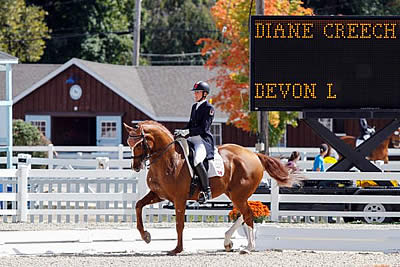 Diane Creech and Devon L to Compete at the Royal Horse Show in Toronto