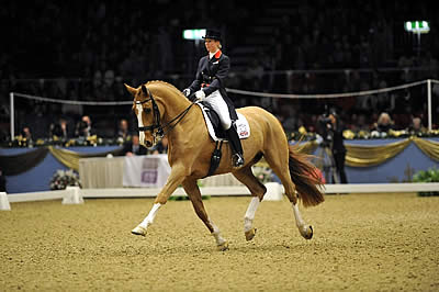 Laura Tomlinson's Dressage Superstar 'Alf' to Say Farewell at This Year's Olympia