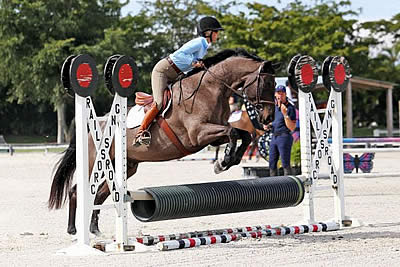 Peter Wylde Jumping Clinic Benefiting Horses Healing Hearts Concludes with Rave Reviews