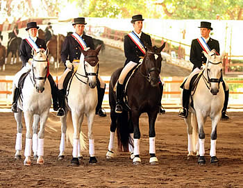 Another Country, Another Nations Cup, Another Interagro Lusitano, This Time for Team Gold
