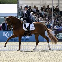 Woodlander Farouche and Michael Eilberg in the Castle Arena