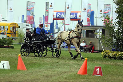 US Para-Driving Team Selected for 2014 FEI World Para-Equestrian Driving Championships