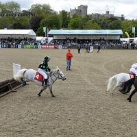 The Shetland Grand National took place in the Castle Arena