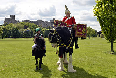 All Creatures Great and Small on 'Windsor Wednesday'