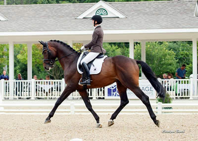 Hemmingway and Sanceo Are Unbeatable at USEF Young & Developing Horse Dressage Nat'l Championships