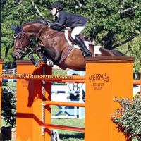 Brianne Goutal and Nice De Prissey finished second in the $100,000 Hermes American Gold Cup Grand Prix Qualifier