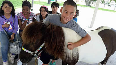 "Horse Around at the ""Horses Helping People"" Family Resource Day"