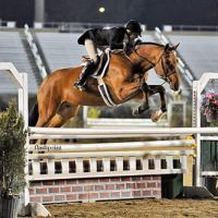 Kelley Farmer pilots Why, owned by DL Glefke and Kensey LLC, over an oxer en route to the win in the $15,000 USHJA International Hunter Derby. Flashpoint Photography.