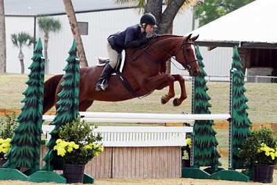Free Clinics and More at Virginia Horse Center Equine Education Day – December 13