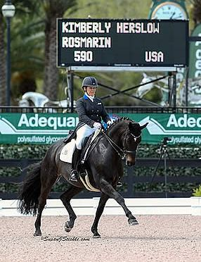 Kimberly Herslow and Rosmarin Sweep FEI CDI1* at AGDF 7