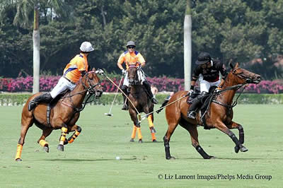 One Point Lands Audi and Orchard Hill in USPA Piaget Gold Cup Finals