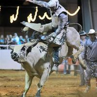 Bull riding excitement Friday and Saturday night this weekend only