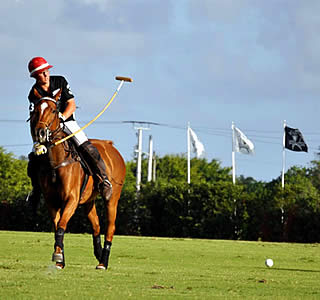 PTF Hosts New Zealand Schools Team in Junior Polo Exchange