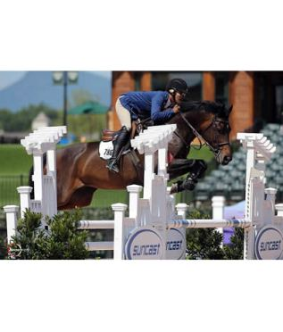 Holly Shepherd Wins First Day of $1,000 Adequan 1.30m Open Jumper