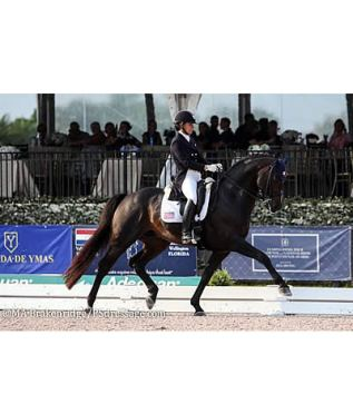 High Performance Dressage Rider Allison Brock Becomes Brooke USA Ambassador