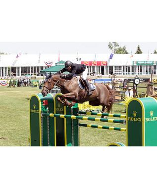 Sameh el Dahan and Suma's Zorro Speed to Win in $126,000 Imperial Challenge at Spruce Meadows