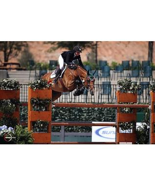 Ali Wolff and Artemis Win $34,000 FEI Tryon 1.50m Challenge