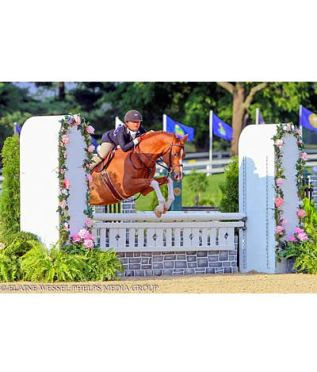 Iwasaki Sweeps Large Green Pony Hunters, Claims Grand Green Pony Hunter Championship