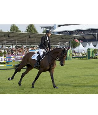 Ingrid Klimke Takes the Lead after the Jumping Test Phase of the CICO 3* Eventing in Aachen
