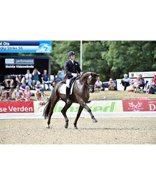 Ots Performs Commendably in FEI World Breeding Championships for Dressage Young Horses