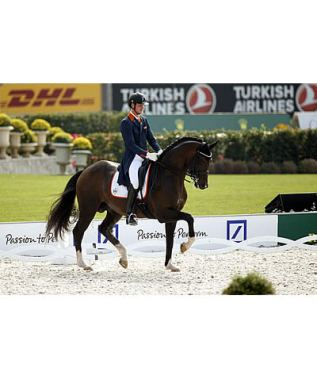 Germany Holds the Advantage after Day 1 of Dressage